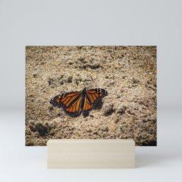 Beachy Butterfly Mini Art Print