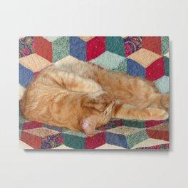 Cat Napping Metal Print
