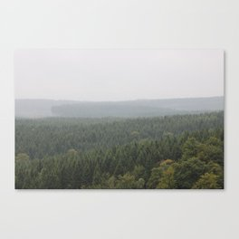 Over Harz Wald Canvas Print