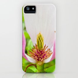 The Lost Gardens of Heligan - Pink Magnolia iPhone Case