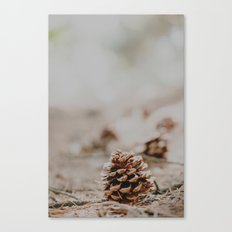 One pinecone Canvas Print