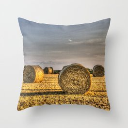 The Summer Farm Throw Pillow