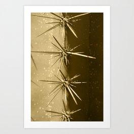 Cactus Closeup Fuerteventura Tint Art Print