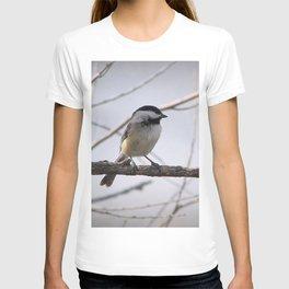 Dee-Dee-Dee T-shirt
