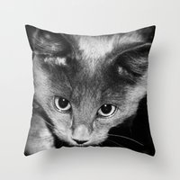 kitten Throw Pillows featuring kitten by Bunny Noir