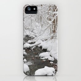 NATURE IS DANCING iPhone Case