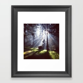 Sun Beams Framed Art Print