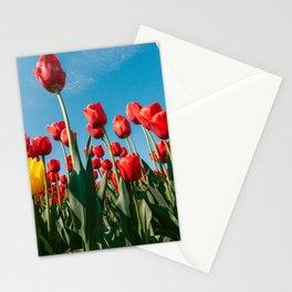Tulip fine art I Netherlands I Travel photography I Art print flower I Holland I Red color Stationery Cards