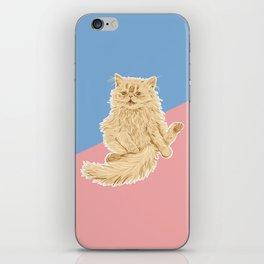Persian Cat Meow iPhone Skin