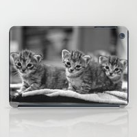 kittens iPad Cases featuring kittens by Grigoriy Pil