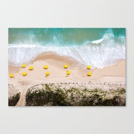 When nature finds its way Canvas Print