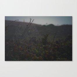 Grand Web Canvas Print