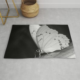 Papillon B/W Rug