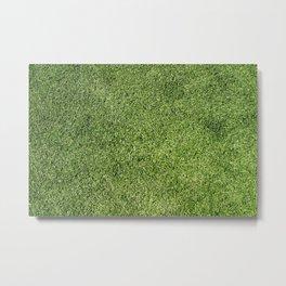 Green Lawn Metal Print
