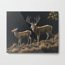 Mule Deer Buck and Doe Metal Print
