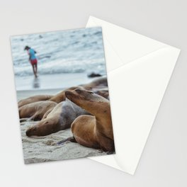 La Jolla Seals Stationery Cards