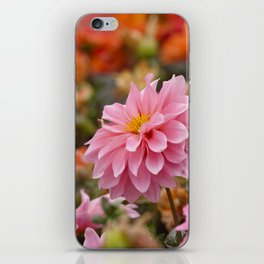 PHOTOGRAPHY / FLOWER 03 iPhone Skin