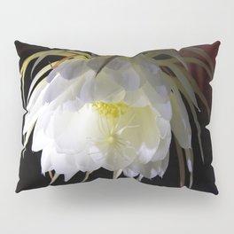 Night Blooming Cereus Pillow Sham