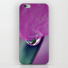 Watermelon Droplet iPhone & iPod Skin