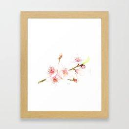 Cherry Blossom (The Branch) Framed Art Print