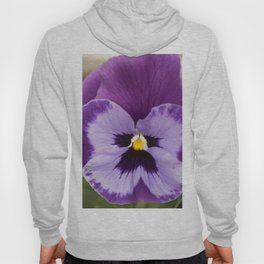 Spring Flowers Series 64 Hoody