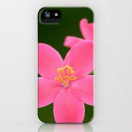 Spicy Jatropha Flower iPhone Case