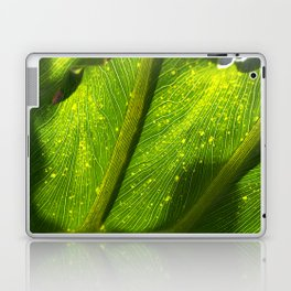 Spotted Leaf Laptop & iPad Skin