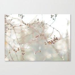 Berry Drops Canvas Print