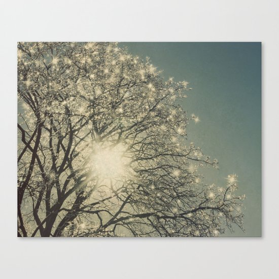 Winter Sparkle Canvas Print