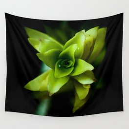 Aptenia succulent plant Wall Tapestry