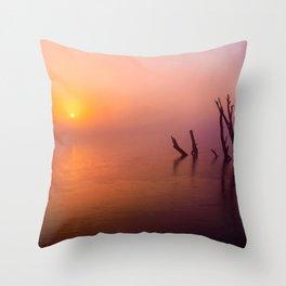 Ltd Edition:beautiful nature scene Throw Pillow