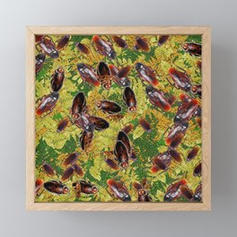 Cockroaches Framed Mini Art Print