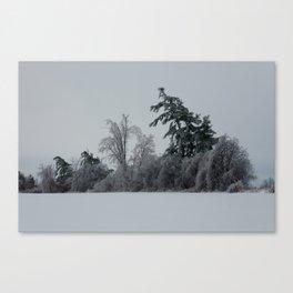 2013 Ice Storm 1 Canvas Print