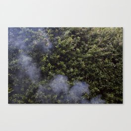 And Smoke Canvas Print