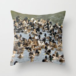 Lots of Ducks Swimming in a Pond in India Throw Pillow