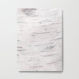 White Birch Wood Metal Print