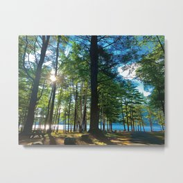 Tree Grove & Lake Sunrise Metal Print