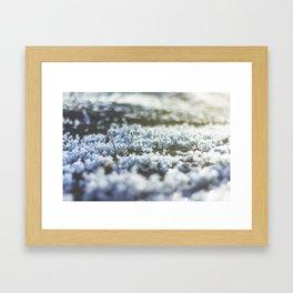 Frost Bookeh Framed Art Print