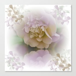 Romantic Camellia / floral design in soft color tones Canvas Print