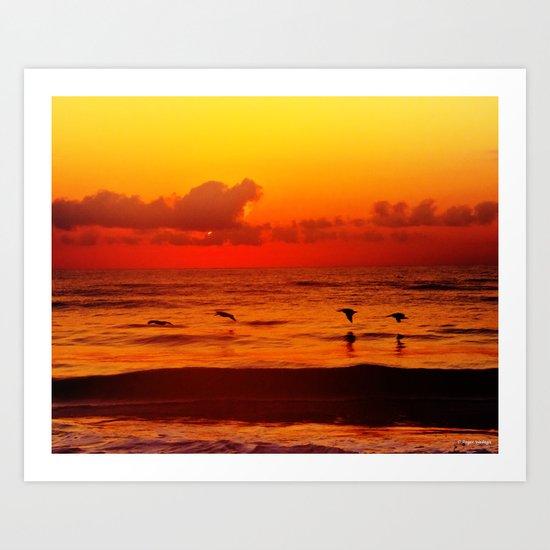 Four Pelican Sunrise Art Print