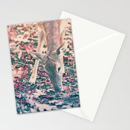 My lovely Deer Stationery Cards