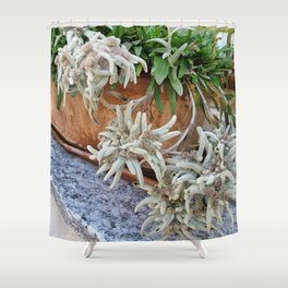 Switzerland Edelweiss Shower Curtain
