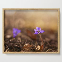 Come with me  Hepatica Forest #decor #society6 Serving Tray