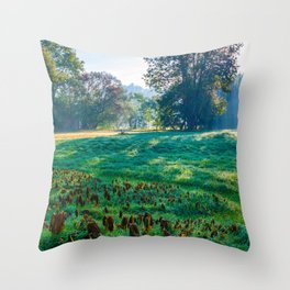 Attnang-Puchheim, Austria Throw Pillow