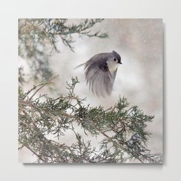 Fly-away Tufted Titmouse Metal Print