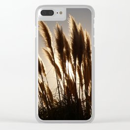 Californian Feathers Clear iPhone Case