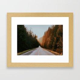 Golden Ears Framed Art Print