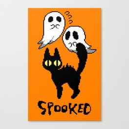 spooked Canvas Print