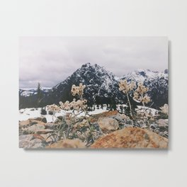 Mountains + Flowers Metal Print