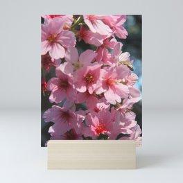 Spring - Cherry flowers Mini Art Print